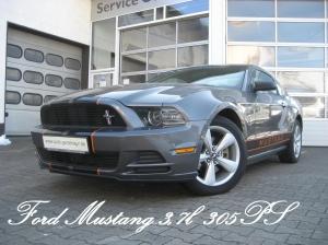 Mustang305.jpg